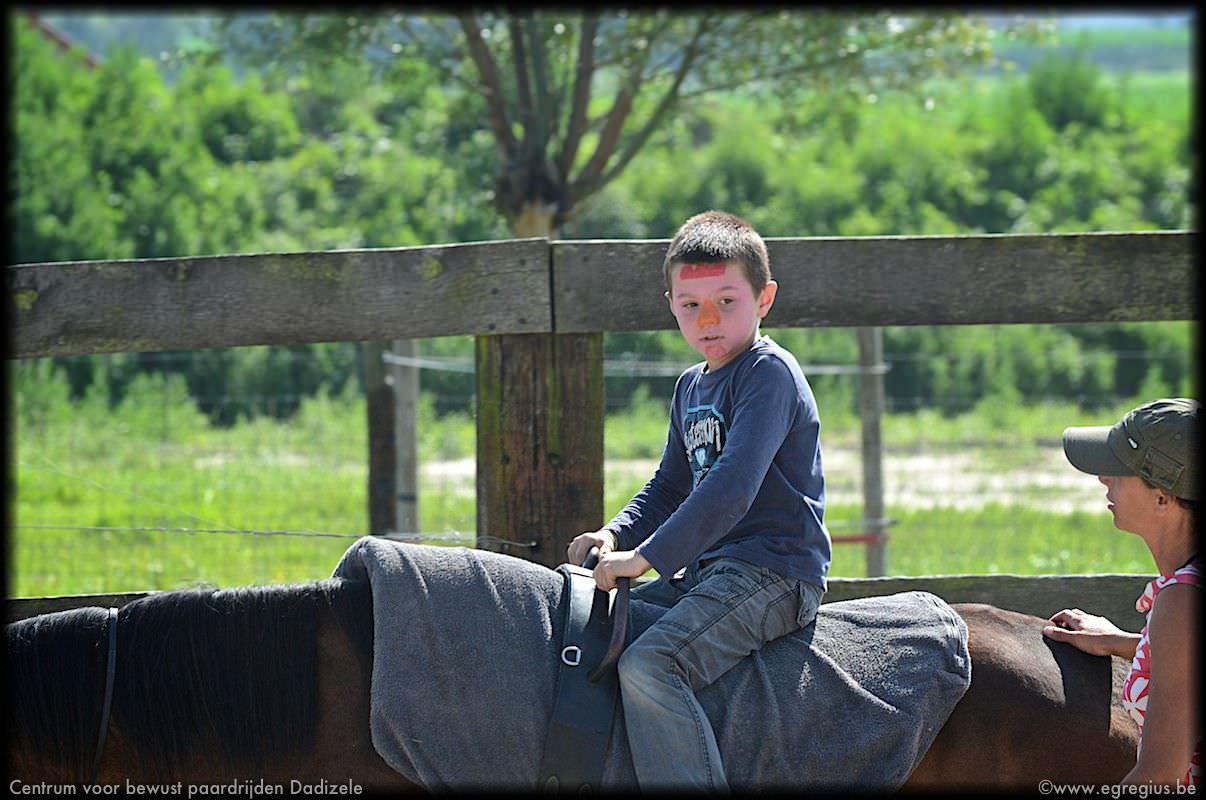 centrum voor bewust paardrijden Dadizele 1